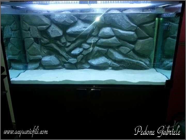 Come fare sfondo 3d per acquario